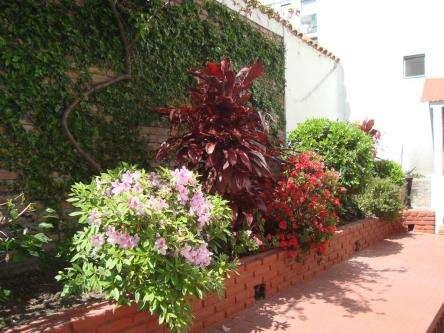 Jardines hue sanidad vegetal paisajismo, palermo